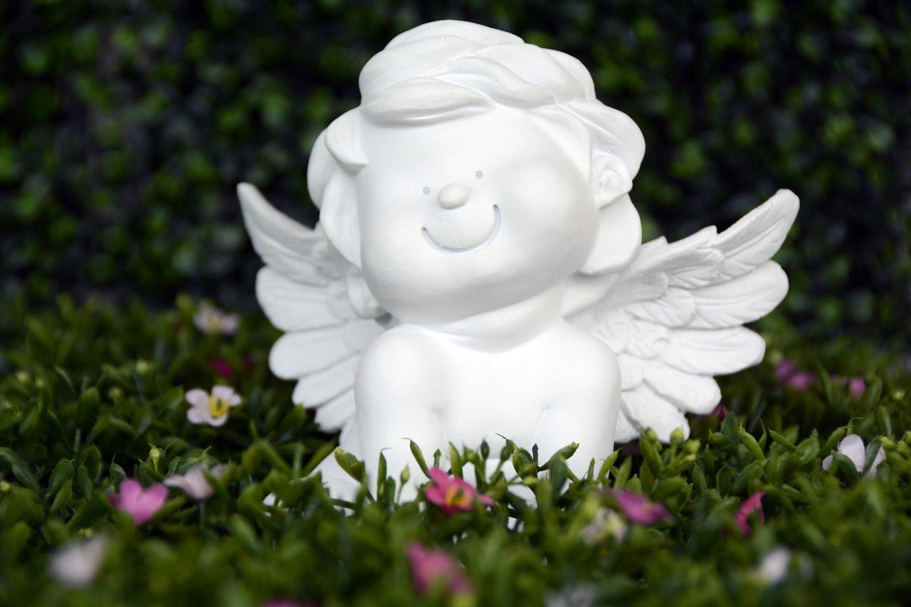 Find angel investor India